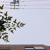 作曲工房 朝の天気 2018-10-15(月)くもり