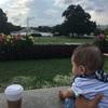 6ヶ月ベビーと長距離バスの旅でワシントンD.C.へ