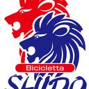 Bicicletta SHIDO