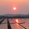 夕日と太陽光パネル20180328