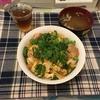 【自炊】親子丼を作って食べてみた!