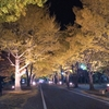 北大イチョウ並木のライトアップを見に行ったんだけど、僕のiPhone5sでは魅力を十分にお届けできない