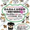 本日は「わんわんくらわんか~保護犬譲渡会③~」。