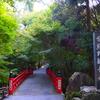 京都 紅葉100シリーズ 今熊野観音寺(いまくまの かんのんじ)