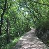 登山道を登って屋島山上に行ってきました。