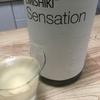 日本酒【笑四季 特別純米 白ラベル 生原酒 初槽限定おりがらみ】飲みやすい良いお酒