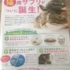 【猫用商品体験レビュー】DHCの「猫用サプリメント」を試してみました!