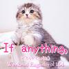 【週末英語#164】英語で「どちらかというと」は「If anything」
