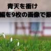 大河ドラマ「青天を衝け」 血洗島編を9枚の画像で振り返る 【大河ドラマ】