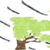 【庭DIYフェンス】強風で倒れる