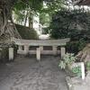 鹿児島への日帰り旅行。楽しかった。桜島も噴火で歓迎してくれた!