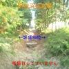 【狂犬通信 Vol.87】下野國安蘇郡・阿曽沼城