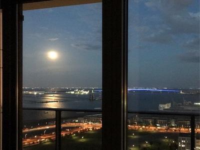 新しい楽しみ〜満月と花火〜