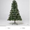 オーストラリアのクリスマスツリーの値段