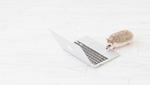 webライティングで稼ぐならどのクラウドソーシングがいい?