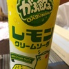 栃木レモンも美味しいですよ。(2016-98)