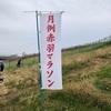 月例赤羽マラソン10kmに参加