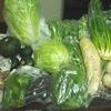 野菜を買いすぎたらどうすればいい!?
