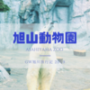GW旭川旅行記①旭山動物園は雨でも寒くても楽しい!