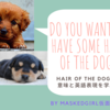 Do you want to have some hair of the dog?と聞かれたら?何それ!犬の毛?~hair of the dogの意味と英語表現~