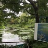 モネの作品「睡蓮」が再現された日本で唯一の施設!「モネの庭」