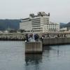 小湊漁港でアジを釣ってきた