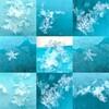 *雪ですね❄️*