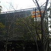 ハロプロ研修生 発表会 2015〜11月・12月の生タマゴShow!〜大阪夜公演