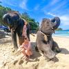 象さんビーチは毎日がフォトジェニック♪