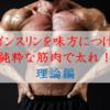 【筋トレバルクアップ】インスリンを味方につけ、筋肉だけで増量せよ!①~理論編~