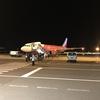 搭乗記 Peach/ピーチ MM318 成田⇒関空 A322 関空は降機から駅まで約30分かかりました