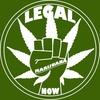 アメリカ政府の二枚舌!大麻の合法化は社会格差を助長させる?
