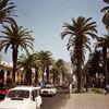 北アフリカ旅行(モロッコ、チュニジア、エジプト)