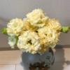 【151】レモンイエローのバラ