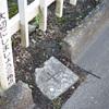 三等三角点「水元」それに江戸川と中川