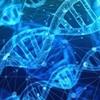 【遺伝子操作】世界初、DNAを人為的に書き換えられた女児が誕生…エイズに耐性を持つ能力