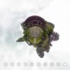 京都大原 勝林院 杮葺のどっしりとした屋根が特徴です #360pic