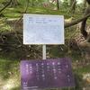 万葉歌碑を訪ねて(その1153)―奈良市春日野町 春日大社神苑萬葉植物園(113)―万葉集 巻十 二二〇八