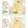ネコノヒー「たこ焼き」