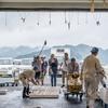 2017年7月29日 小浜漁港 お魚情報