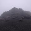 久しぶりに山歩き 一日雨でした( ノД`)シクシク…