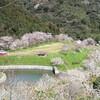 高蔵堡塁跡(高蔵森林公園)