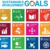 【就活】SDGsとは何なのか?なぜ企業がSDGsをアピールするのか