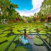 蓮の池はきっとシトシト雨降りの日でも美しいと思う♩『Ma Doo Bua 』カフェ&レストランでゆったりと過ごす時間は心地良い♡
