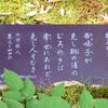 万葉歌碑を訪ねて(その1068)―奈良市春日野町 春日大社神苑萬葉植物園(28)―万葉集 巻三 四四六
