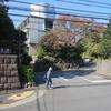 国際文化会館・旧岩崎邸庭園 東京都港区六本木