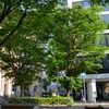 まだ、晴れ間の広がる神戸