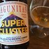 王道ラグニタスからのインペリアルIPA【本日のクラフトビール 36杯目】