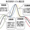 アノマリーと相場サイクルを組み込んだ新売買システムの開発スタート