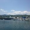 早川漁港のあじ・地魚まつりに出かけてまいりました!